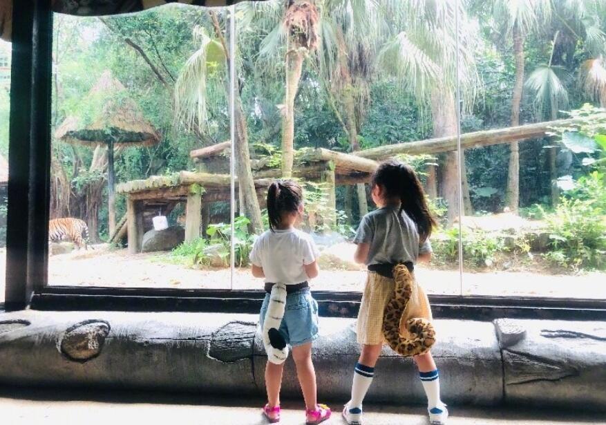 董璇女儿游动物园
