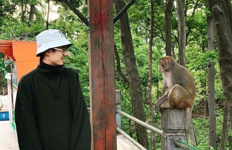 刘昊然和猴子对视 微笑侧身看向猴子对视画风奇特