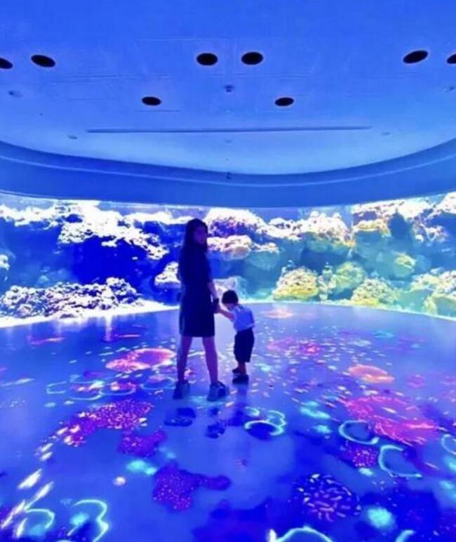 昆凌带孩子去海洋馆