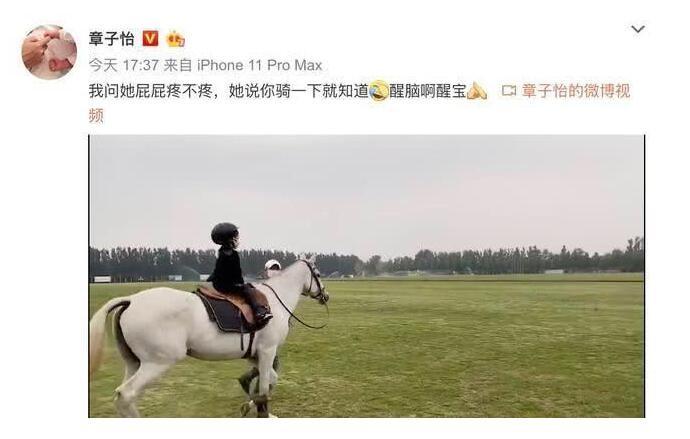 章子怡带5岁女儿骑马 全副武装骑着白马可爱超萌